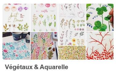 Tableau d'inspiration Pinterest Végétaux et Aquarelle