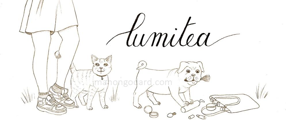 Dessin d'une illustration personnalisée pour une bannière de blog