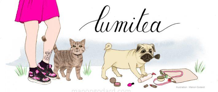 Illustration personnalisée pour la bannière du blog Lumitea