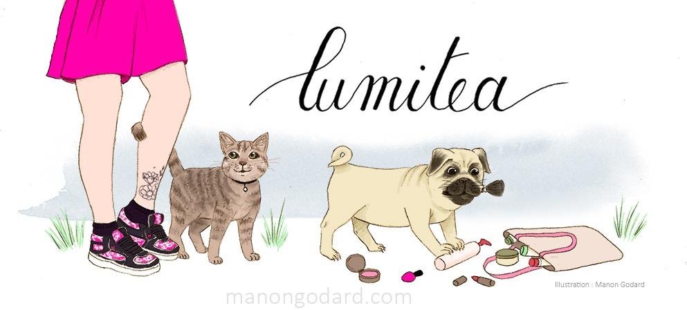 Illustration personnalisée pour une bannière de blog, avec chat et chien