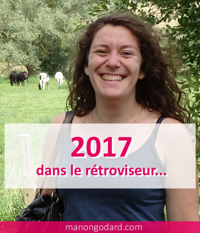 2017 dans le rétroviseur...