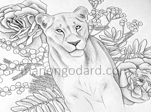 """Illustration """"Lionne et fleurs"""" par Manon Godard - Dessin cours"""