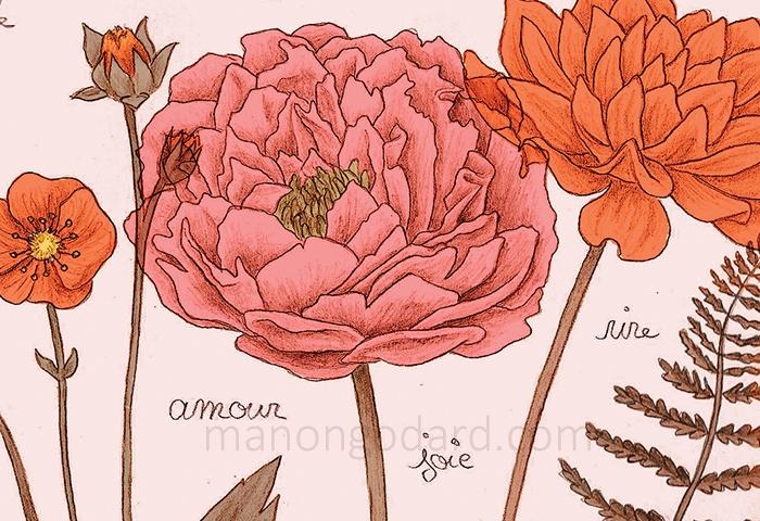 Détail - Fleurs et végétaux, illustration au crayon par Manon Godard