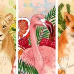 Illustrations «Animaux et végétaux» (+ vidéo dessin)