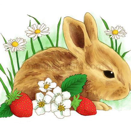 Dessin lapin au crayon, illustration de Pâques par Manon Godard