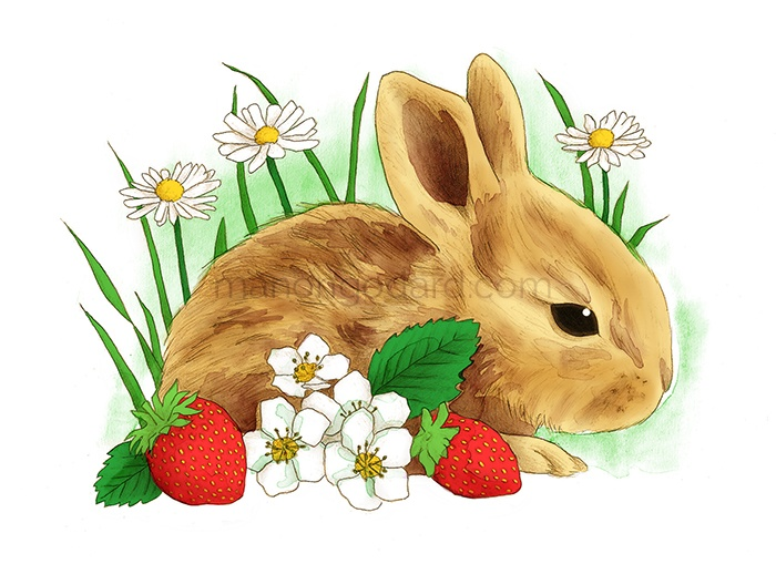 Illustration de Pâques (+ vidéo du dessin)