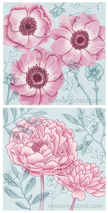 "Duo ""Pivoines & Anémones"" illustrations par Manon Godard"