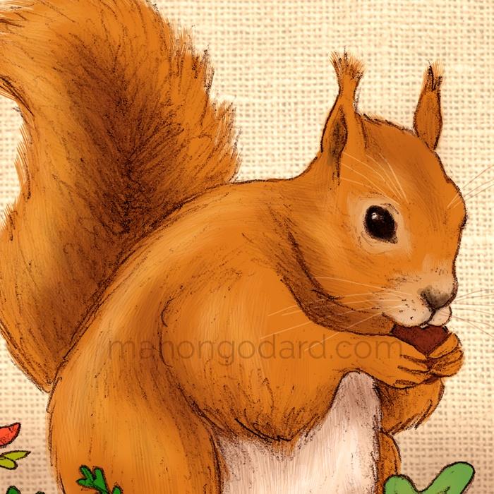 Illustration Ecureuil Gourmand - Dessin au crayon - par Manon Godard